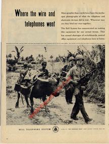 Signal Corps Using Water Buffalo